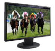 Live Horse Racing Streams